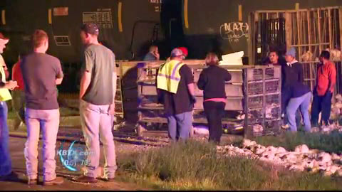 A trucker was injured and had to be taken to the hospital following a collision with a BNSF train in North Zulch, TX late Monday night on March 18, 2013. The truck was loaded with live chickens.